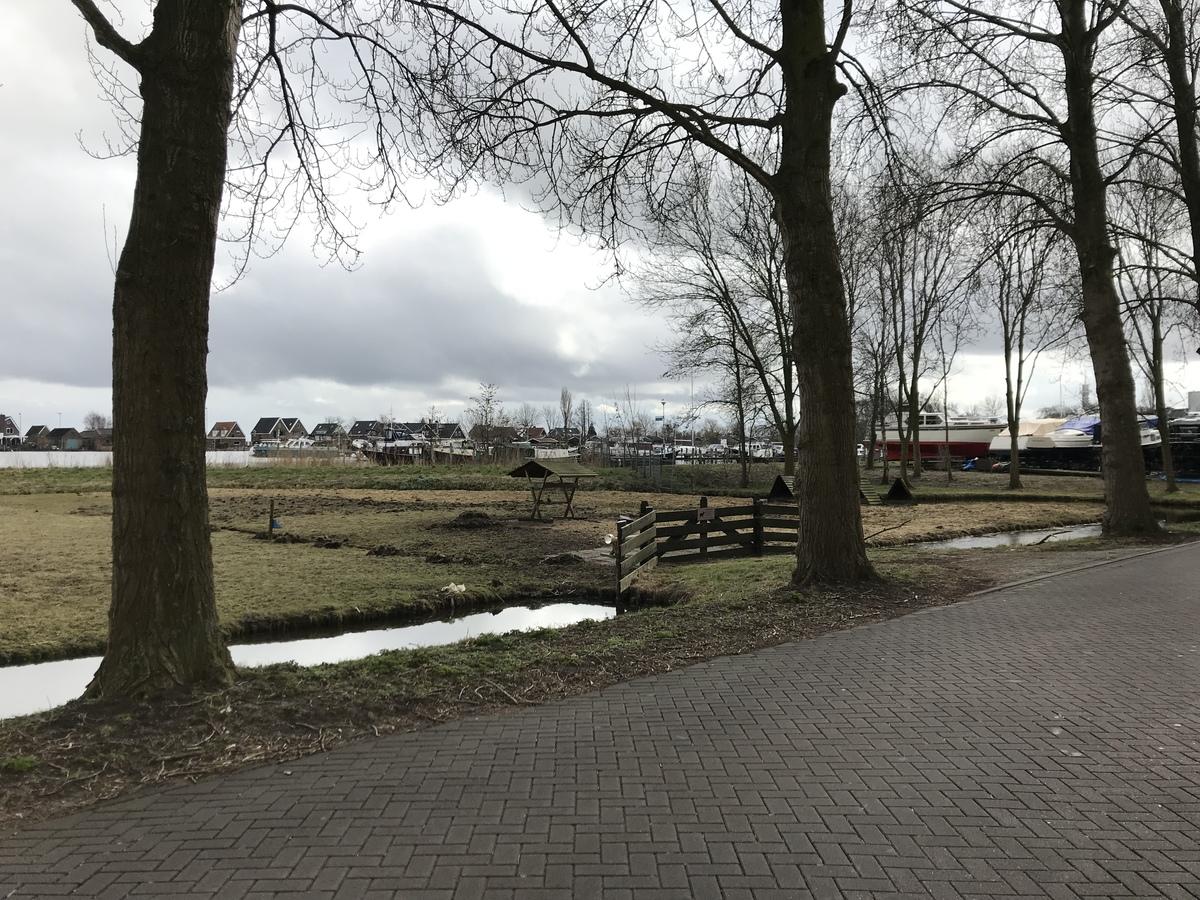 het landschap in West-Knollendam: zicht op bomen, weiden en haven