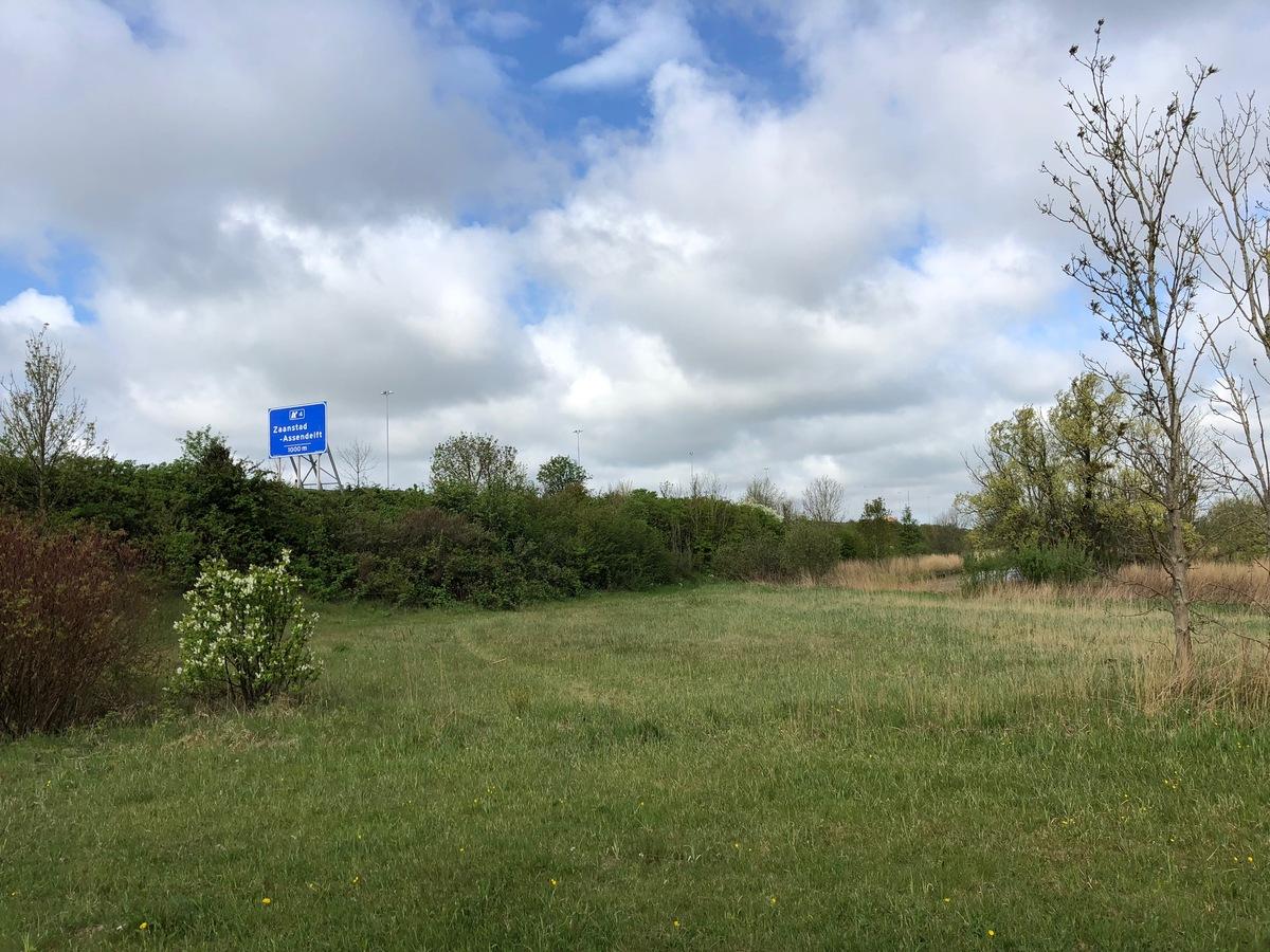 Foto langs de A8 met stukje natuurgebied